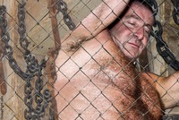 hairy gay bears porn plog bdsm mens bondage dungeon gay leather mans photos weekly men gallery hairy chest daddy bear daddie captured enslaved
