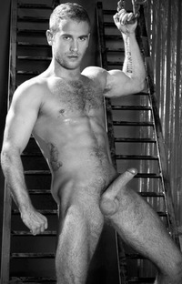 hairy gay male porn Pictures hairy stiff solo