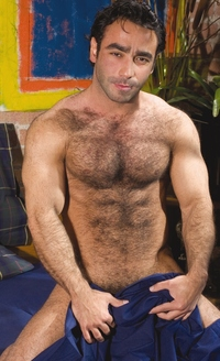 hairy gay porn pictures hairy gay porn star hussein great tempting