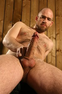 hairy gay sex photo pistol pete hairy bald gay sexy fucker dick erect cock daddies bareback