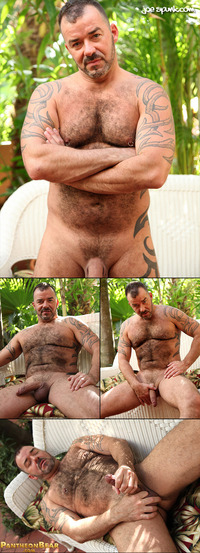 hairy naked muscle men collages pantheonbear steve king muscle bear day
