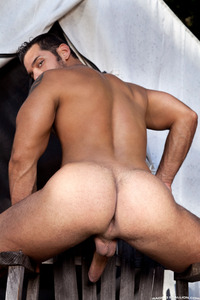 hardcore gay porn picture gallery gallery marcus ruhl