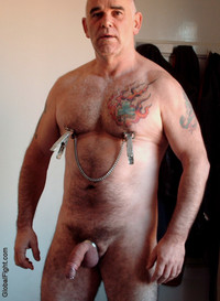 hung men cocks plog hairychest musclebears very furry daddies fuzzy studly manly men hairy musclemen silverdaddies muscular athletic tight nipple clamps hung cock