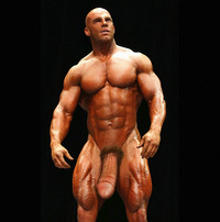male bodybuilder penis shiloe steinmetz bodybuilder hunk shows