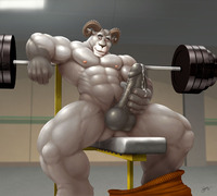 male bodybuilder penis rule