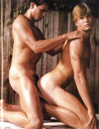 male gay porn gay porn peter north male star solo photo