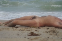 male pictures nude wikipedia commons male nude study beach