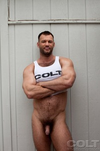 muscle bear gay porn gay hardcore porn star muscle bear hairy huge pecs bottom ass jockstrap colt studio group gruff stuff brenden cage fucking sucking masculine guy