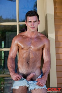 muscle hunk gay pic media muscle gay free pic porn
