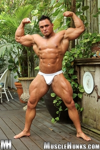 muscle porn gay media hunks gay porn