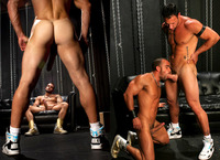 muscle studs gay sex imagesblog animus muscle studs one very dominant obedient