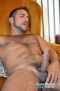 muscular hairy gay sex