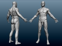 naked male pictures naked male test sculpt
