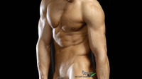 nude male photos wallpapers nude male torso tablet wallpaper
