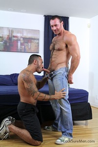 pics of hairy cocks hairy muscle bears brad kalvo alessio romero trade blow jobs fuck cock sure men pic page