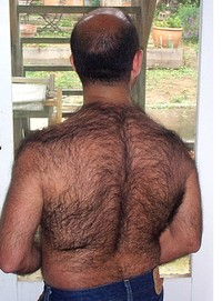 pics of hairy gay men extremely hairy bears gay man bear men