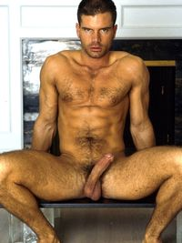 Pics porn gay gallery andy mantegna classic male porn stars