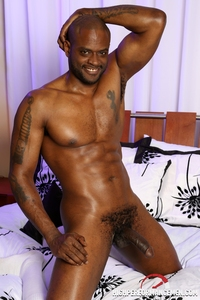 pictures of gay black men media porn gay black men