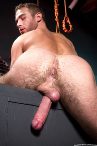 raging gay porn media raging stallion gay porn
