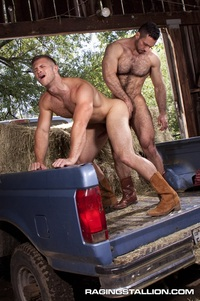 raging gay porn furry muscle man paul wagner fucks adam champ tight ass raging stallion gay porn gallery here
