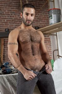 tom Wolfe gay porn hairy muscle hunks jason michaels tom wolfe suck cock fuck built tough from raging stallion studios pic
